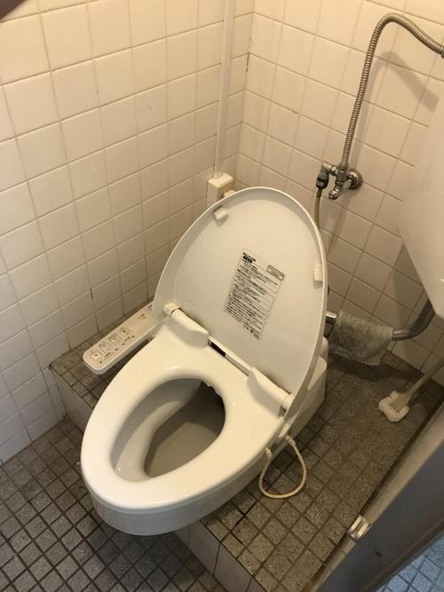 toiletbefore.jpg