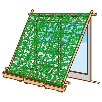 緑のカーテン.jpg