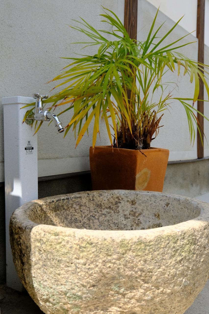http://www.tanakajuken.com/blog/images/s-DSCF0143.jpg